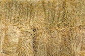 Straw texture for background — Stock Photo