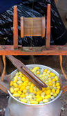 Silk Production Process, making of the cocoon silkworm from egg — Foto de Stock