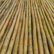 Bamboo fence background texture pattern — Stock Photo #44244721