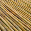 Bamboo fence background texture pattern — Stock Photo #44247003