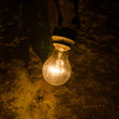 Old light bulb in cave — Stock Photo #47651827