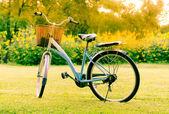Piękny krajobraz z rowerów w parku — Zdjęcie stockowe