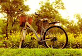 Beautiful landscape with Bicycle at park — Stock Photo