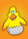маленький желтый цыпленок — Cтоковый вектор