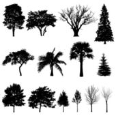 Trees' silhouettes — Stock Vector