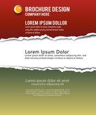 Torn paper for your background — Vector de stock