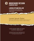 Fundo de papel rasgado. — Vetorial Stock