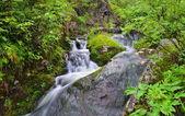 Cachoeiras idílicas — Foto Stock