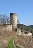 Old ruin in tne South Bohemian. — Stock Photo
