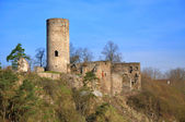 Old ruin in tne South Bohemian. — Foto de Stock