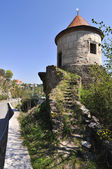 Ruins (watchtower) — Stockfoto