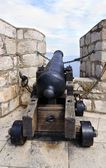 Historic cannon — Stock Photo