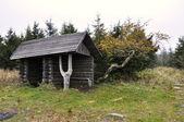 Piccola casa di legno — Foto Stock