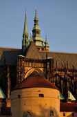 St vitus cathedral — Stockfoto