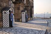 Guards at the Royal Palace Hradcany in Prague — Stock Photo