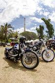 Harley-Davidson-custom — Stock Photo