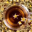 Cup of camomile — Stock Photo