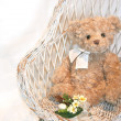 Cute teddy bear on a vintage white wicker chair with flowers — Stock Photo