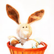 Cute tipical eastern bunny in a basket with eastern eggs — Stock Photo
