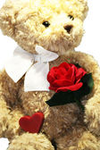 Lovely Teddy bear with heart and red rose — Stock Photo