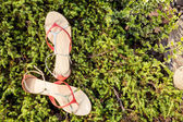 Sandálias, sapatos elegantes femininos na natureza — Fotografia Stock