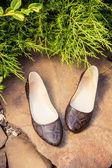 Snakeskin ballet flats, women's shoes on a rock — Stock Photo
