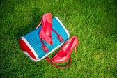 Damenschuhe sind auf dem Beutel und auf dem Boden, Sommer-Schuhe Damen — Stockfoto