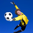 A goalkeeper makes a spectacular save. - Foto de Stock