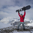 Royalty-Free Stock Photo: A snowboarder celebrates being on the top of snow covered mountains.