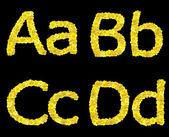 Alphabet, script, ABC — Stock Photo