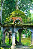 Javanese tiger in Jambatan Buaya park, Java Indonesia — Stock Photo