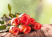 красная роза — Стоковое фото