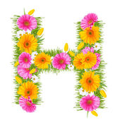 Gerbera alphabet — Stock Photo