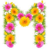 Gerbera alfabetet — Stockfoto