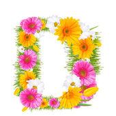Gerbera alphabet — Stock Photo