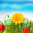 Easter concept. — Stock Photo