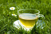 Cup of tea in the grass on sunny day — Stock Photo