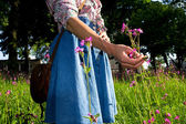 Young woman picking flowers — Stock Photo