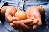 Hands carefully holding egg — Stock Photo