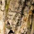 19th century graffiti on cave wall — Stockfoto