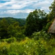 Shack in the Slovenian countryside — Stock Photo