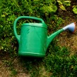 Green plastic watering can — Stock Photo