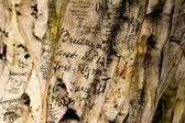 19th century graffiti on cave wall — Stock Photo