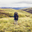 Backpacker standing in the middle of the wilderness — Stock Photo