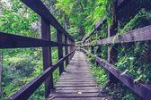 Puente de madera en el bosque — Foto de Stock