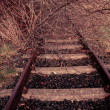 Stock Photo: Rural disused railway track