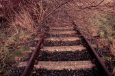 Rural disused railway track — Stock Photo