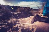 Hiker relaxing on the beach — Stok fotoğraf