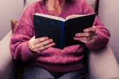 Old woman reading at home — Stockfoto