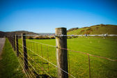 Fence in the country — Stock Photo